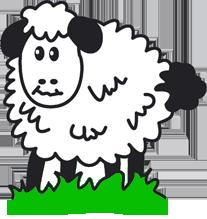 Sheep 200